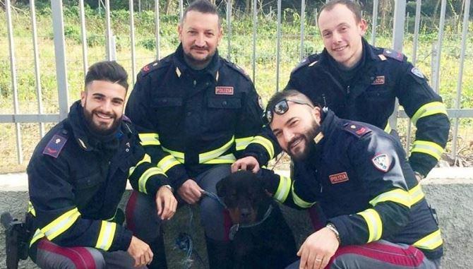 Il cucciolo salvato sull'A2