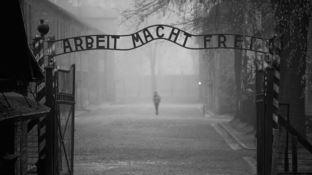 Auschwitz, il più grande campo di sterminio nazista