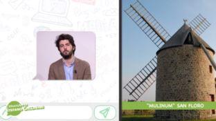 La rivincita dei grani antichi, il WhatsApp di Stefano Caccavari