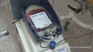 Donare il sangue, un piccolo gesto che può salvare tante vite