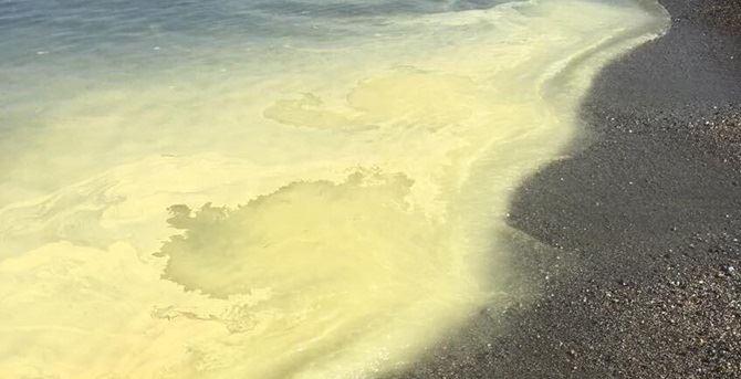 Strisce gialle nastriformi lungo i litorali calabresi
