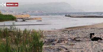La foce del fiume Mesima