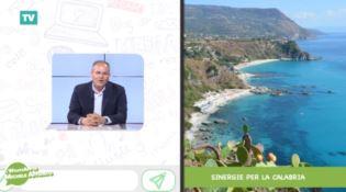 Sinergie per la Calabria, il WhatsApp di Affidato