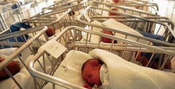 Istat, crollano le nascite. Dato più basso dal 1861