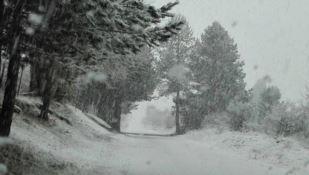 Nevicate in Sila