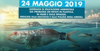 Vibo Marina, Capitaneria e studenti liberano le spiagge dalla plastica