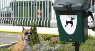 Usare il dna dei cani per beccare e multare gli incivili: la proposta del Codacons