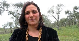 Tassa sugli agriturismi: «Esiste solo in Calabria, ecco perché va abolita»