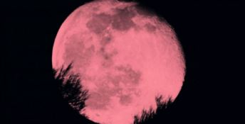 Occhi al cielo, arriva la luna rosa: ecco quando ammirarla