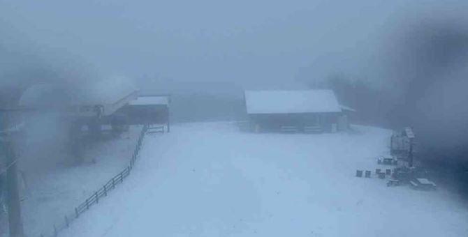 La neve in Sila - Foto tratta da Telemaconet