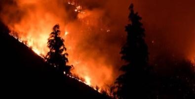 Longobucco, 5 indagati per l'incendio di Paleparto che durò un mese