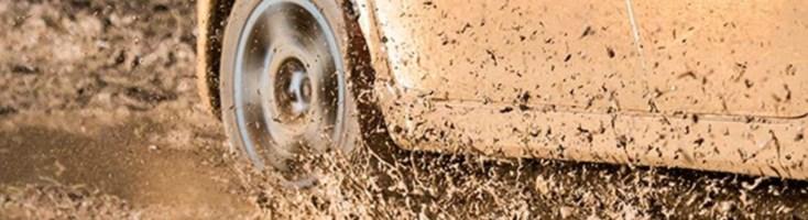Un'auto nel fango - Repertorio