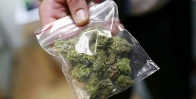 Il comune è zona rossa così vende droga da casa: un arresto nel Catanzarese