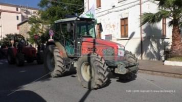 Olio, trattori in strada a Lamezia contro l'abbattimento dei prezzi
