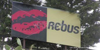 Prima estate senza il Rebus: dopo 50 anni chiude la storica discoteca