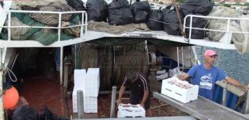 Pescatori ostaggio della plastica che non possono scaricare nei porti