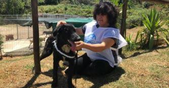 Ridotta in fin di vita e abbandonata, storia a lieto fine per la cagnolina Giulia