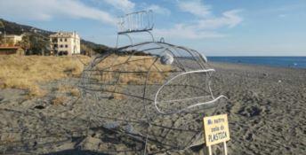 Sulla spiaggia di Longobardi arriva il pesce mangia plastica