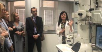 Delegazione di diplomatici latinoamericani in visita all'Unical