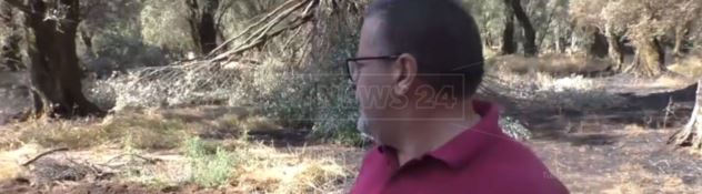 Oltre 300 danneggiamenti in 20 anni, testimone di giustizia ancora nel mirino del clan Alvaro