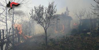 Incendio minaccia abitazioni, evacuati residenti a Fossato