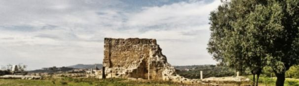 «Resti umani nel parco archeologico di Mileto». Si scava per trovare conferme alla segnalazione