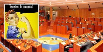 I predatori di mimose se ne fottono delle pari opportunità in politica