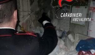 Bimba costretta a vivere in casa tra rifiuti ed escrementi: denunciata la madre