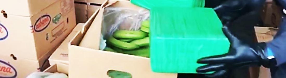 Cocaina tra le banane a Gioia Tauro