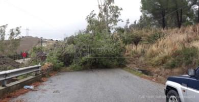 Raffiche di vento, forti piogge e mareggiate. Il maltempo sferza la Calabria: danni e disagi