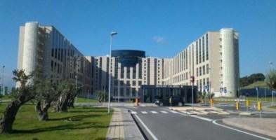 Task force veterinaria, 2.400 euro al mese e obiettivi non raggiunti