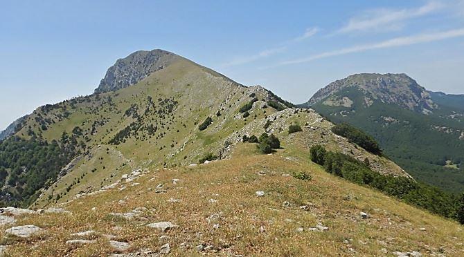Montagne calabresi