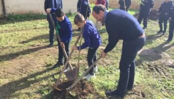 Laureana celebra la Festa dell'albero in ricordo del piccolo Giovanni