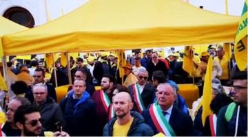 Sos cinghiali, in protesta a Roma anche gli agricoltori calabresi: «Servono più tutele»