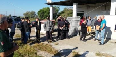 Canile lager a Gioia, il responsabile: «Ritorsioni perché sono testimone di giustizia»