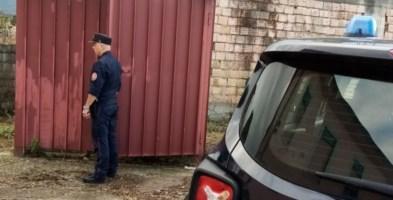 Indagano per incendio ma scoprono 41 cardellini detenuti illegalmente