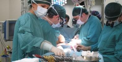 Muore a 12 anni in ospedale per un'occlusione intestinale: aveva mal di pancia