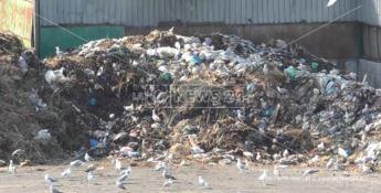 Caos rifiuti, impianti stracolmi e camion fermi ai cancelli