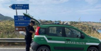 Buttava scarti di macelleria nella vegetazione: una denuncia a Praia