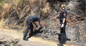 Incendio distrusse un bosco a Lattarico, denunciati due giovani