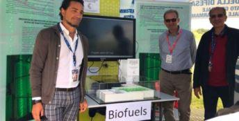 Alghe come biocarburante: la ricerca Unical  al Gran premio di Monza