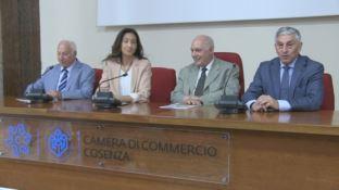 Un ponte virtuale tra l'Australia e la Calabria: ecco l'iniziativa