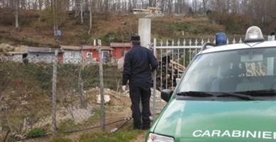 Locride, bosco distrutto per far posto a baracche abusive: 7 denunce