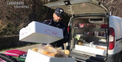 I formaggi sequestrati