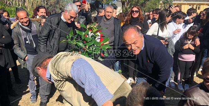 Nicola Gratteri durante la piantumazione dell'ulivo a lui dedicato