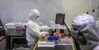 Coronavirus in Calabria, diminuiscono i contagi: il bollettino del 31 marzo