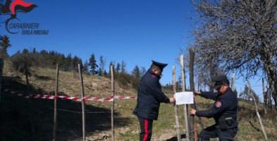 Scala Coeli, tentata truffa su finanziamento regionale: denunciati due progettisti