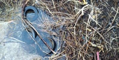 Alcuni dei copertoni rinvenuti nei pressi della foce del fiume Corvino