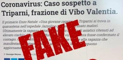 Coronavirus, la grafica de Il Vibonese utilizzata per una fake news