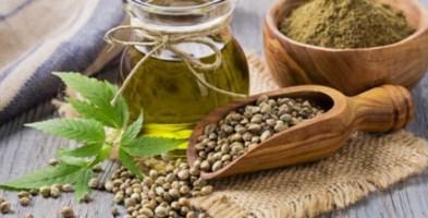 Via libera alla cannabis a tavola: fissati i limiti massimi di Thc negli alimenti